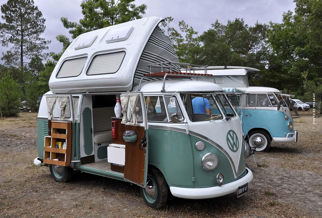 Dropouts: Family, Hippie & Seniors - Get Out!