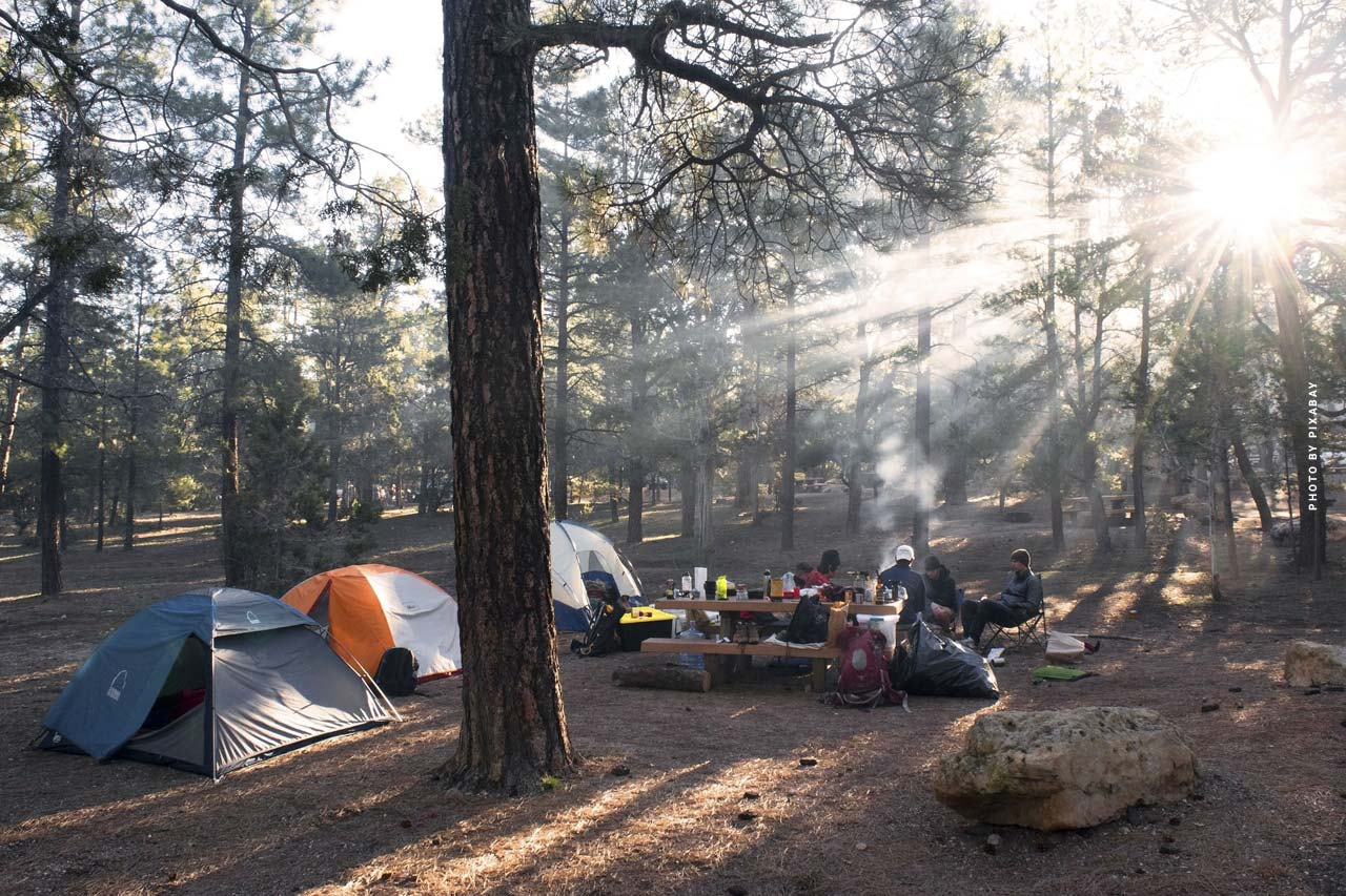 Black Forest: Nature, wellness & camping - Vacation & hiking in the mountains