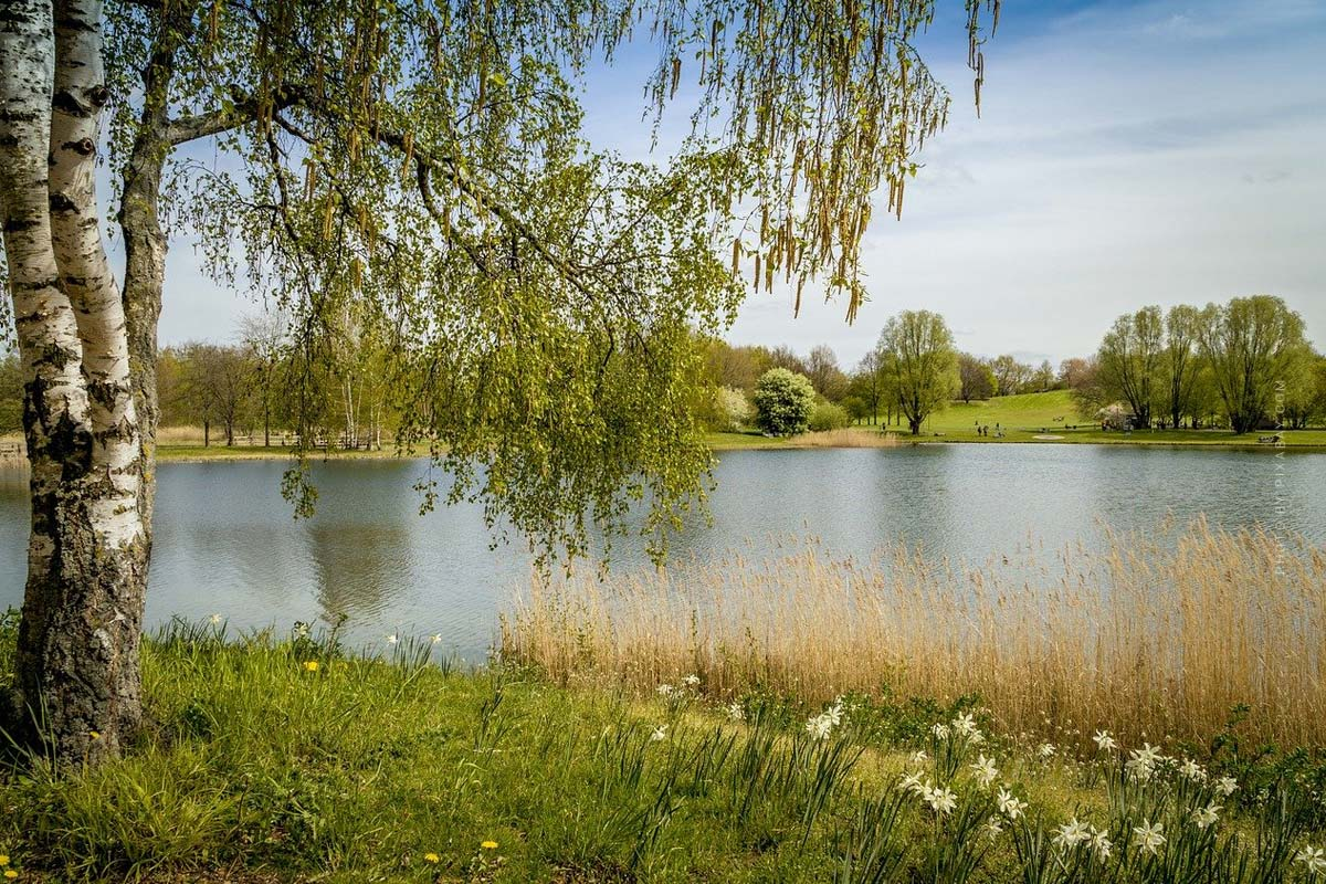 Camping Berlin: Breitehorn, Krossinsee & Co. - Nature in the big city