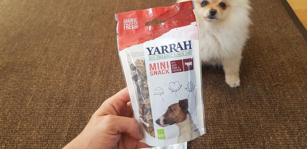 Organic dog food?! Yarrah ordered & tested: Dry food, chew stick & mini snacks as a reward