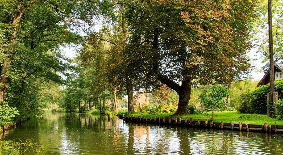 Holidays in the Spreewald: Canoe tours, stand-up paddling & Tropical Islands - 5 tips